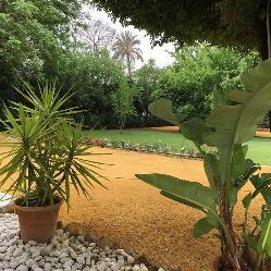 Jardín para eventos de empresa y celebraciones privadas en Casa Sotohermoso