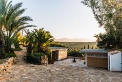 Palm garden & healing room