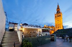 HOTEL DOÑA MARIA en Provincia de Sevilla