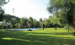 Amplios espacios ajardinados en Cerros Bravo Apartamentos