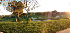 Increíbles espacios para tus eventos en Campo de Golf 2 La Moraleja