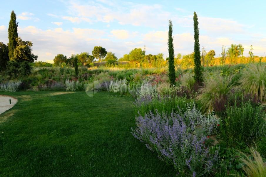 Jardines en Finca Astilbe