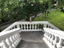 Escalones de la entrada