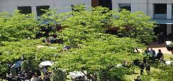 hotel-alimara-eventos-jardin-galeria.jpg
