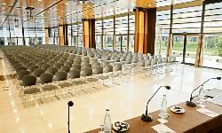 Sala Plenaria 600 personas