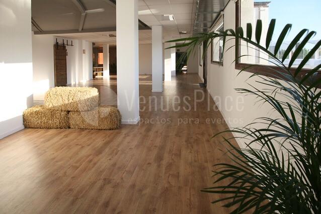 Interior con mucha luz natural i vistas en Attic Studio