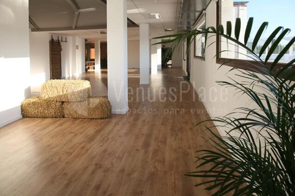 Interior con mucha luz natural i vistas en Attic Studio