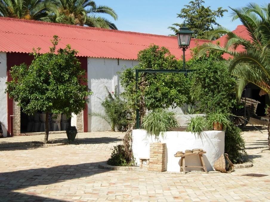 Interior 5 en Hacienda Chambergo
