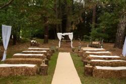 Bosque boda-min.jpg