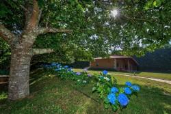 Villa Hortensias 3-min.jpg