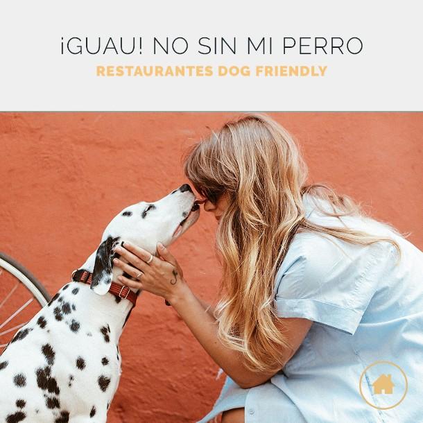 Restaurantes que admiten perros en Madrid y B