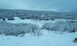 Paisaje nevado, junto a la casa