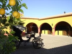 Cortijos para celebrar una comunión en Sevilla
