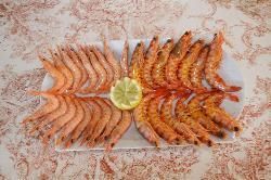 CATERING MARIA ANTONIA  gastronomía de alta calidad