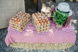 Los mejores productos en Mónico Catering- El Soto de Mónico