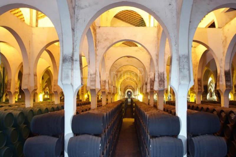 Interior 1 en Bodegas Fundador Pedro Domecq