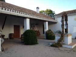 Bodega-Hoya-de-Cadenas-Patio-Interior-5.jpg