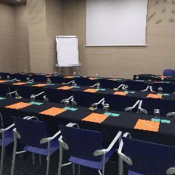 Sala MI, con 50 m2, ideal para reuniones de pequeño formato para unas 20 personas.