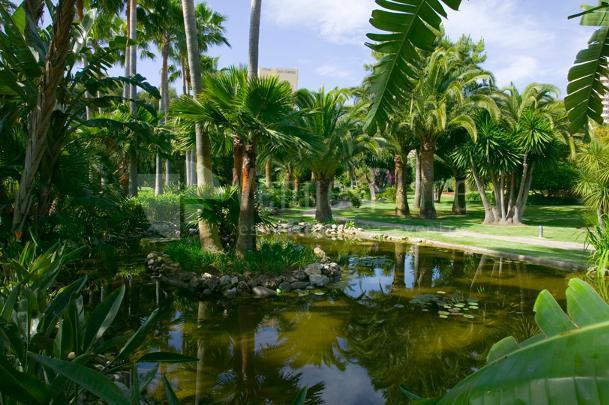 40.000 m2 de jardines tropicales en Don Carlos Leisure Resort & Spa
