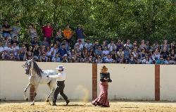 Celebraciones en Cortijo Doña María