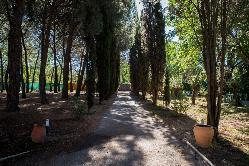 Jardín Principal en Complejo Nivaria