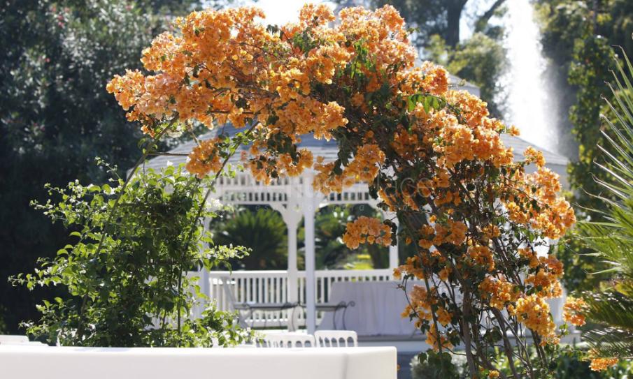 Exterior 1 en Jardines La Hacienda