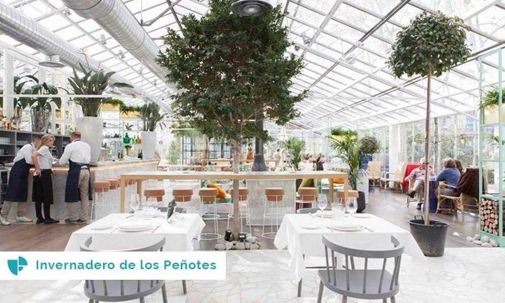 Invernaderos los espacios de moda para celebrar bodas for Vivero alcobendas