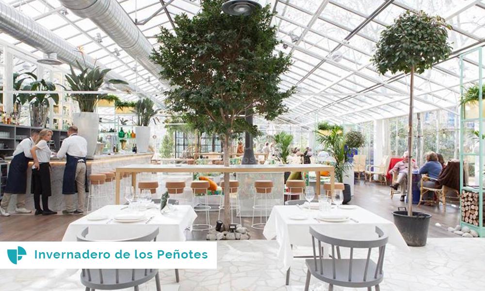 Invernaderos los espacios de moda para celebrar bodas for Vivero los penotes