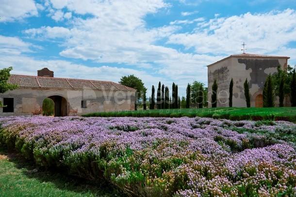 Vista general capilla y entrada