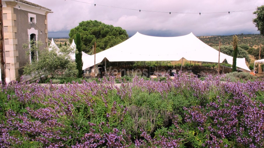 Carpa en el jardín Palacio Santa Cristina