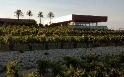 Bodegas Luis Pérez- Eventos en Provincia de Cádiz