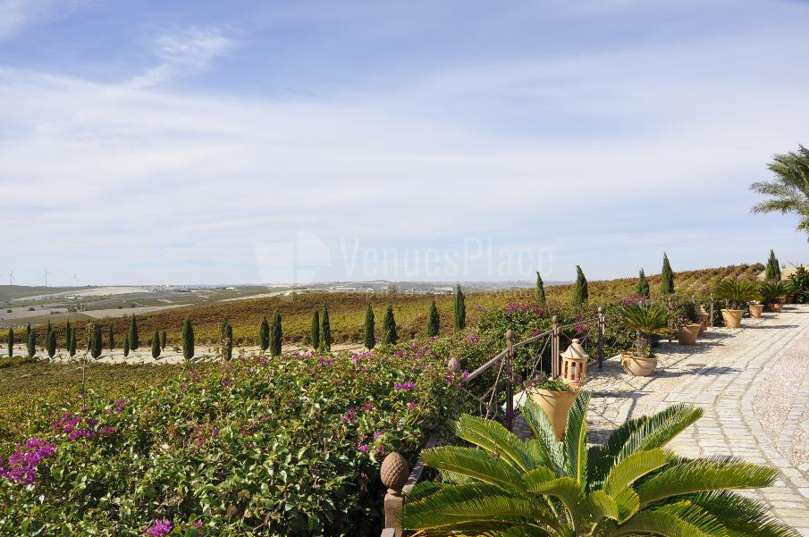 Bodegas Luis Pérez disfruta de las vistas de si impecables viñedos