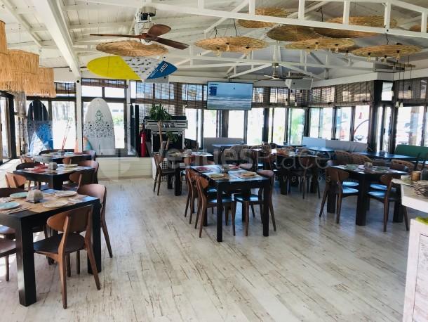Interior 1 en La Playa Surf House