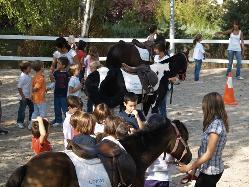 Exterior en Pony Club de Somosaguas