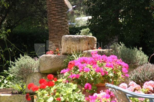 Jardines privados para eventos especiales  en el Cortijo de Arenales