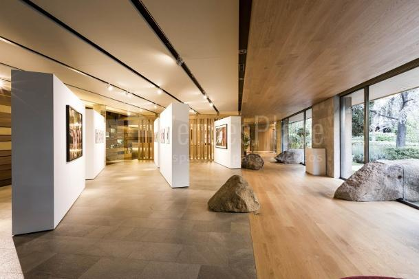 Interior 3 en Galería de Arte en Castellana