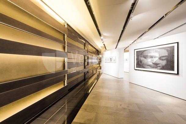 Interior 1 en Galería de Arte en Castellana