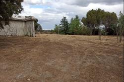 Finca rural Villafranca del Castillo