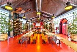 Interior 4 en La Organic Experience