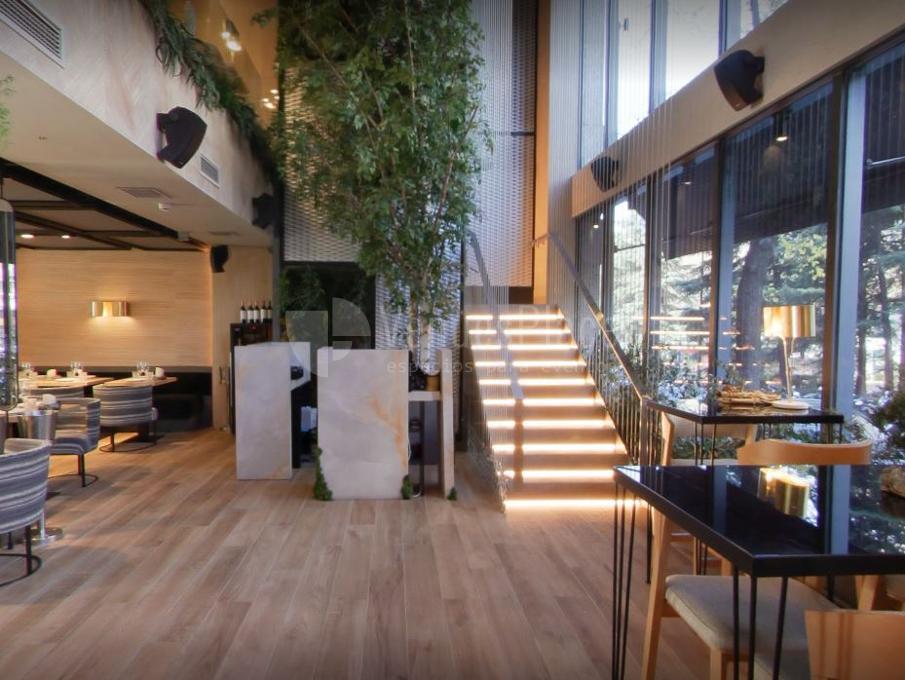 Interior 3 en Pomerania Madrid