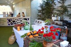 Rincón andaluz zona aperitivos