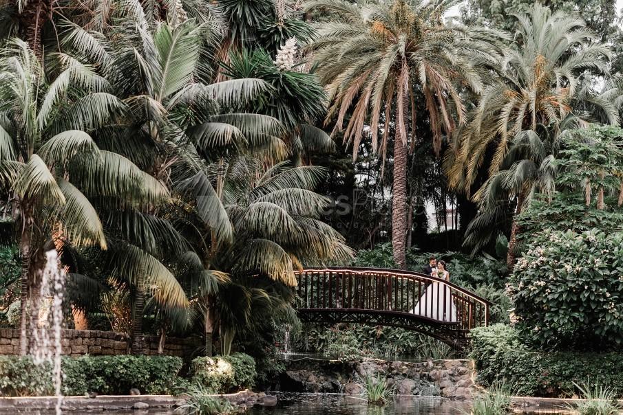 Montaje 13 en Hotel Botánico and the Oriental Spa Garden