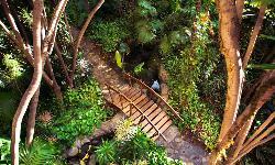 Exterior 6 en Hotel Botánico and the Oriental Spa Garden