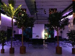 Montaje 7 en Studio Pradillo 54 eventos