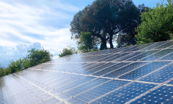 Huerto Solar en La Casona de Monterrey