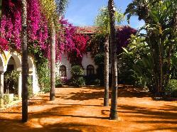 patios-hacienda-montelirio-1-1030x769.jpg