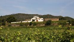 Mas Llagostera en Provincia de Tarragona