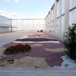 Exterior 5 en Palacio de Congresos de Albacete