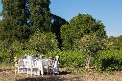 Eventos de empresa, team building, bodas, fiestas privadas en Hacienda Zorita