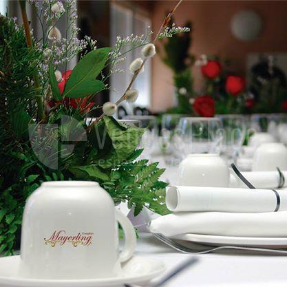 Complejo Mayerling celebra tus eventos en sus instalaciones